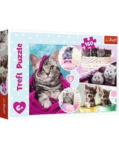 Kattekillinger puslespil 160 brikker