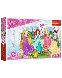 Princess puslespil 60 brikker